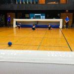 1. Plan général du terrain de mini-goalball. Au fond l'équipe des Griffons.