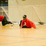 TIGM2019-Deux joueurs de l'Alberta au sol.