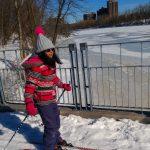 3. Alba avance tranquillement sur la neige.
