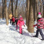 7. Du sport pour moi! – Hiver 2019 - Raquette. Marie-Anne, suivie des participants, marche entre les arbres.