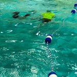 Programme Du sport pour moi! Printemps 2019 - Natation. Capitale-Nationale - Printemps 2019. Madeleine nage et Félix tente de la toucher, tous les 2 sous l'eau.