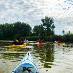DSPM-Montréal-Automne 2019-Mayak. Le groupe en en kayak et mayak vue de derrière.