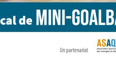 Texte : 7e édition Tournoi amical de mini-goalball. Un partenariat. Logo ASAQ. Logo Challenge hivernal d'Adaptavie.